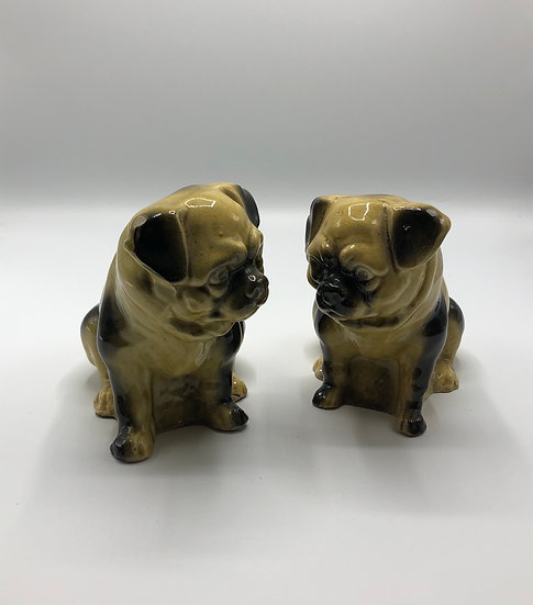 Early 20thC Pugs