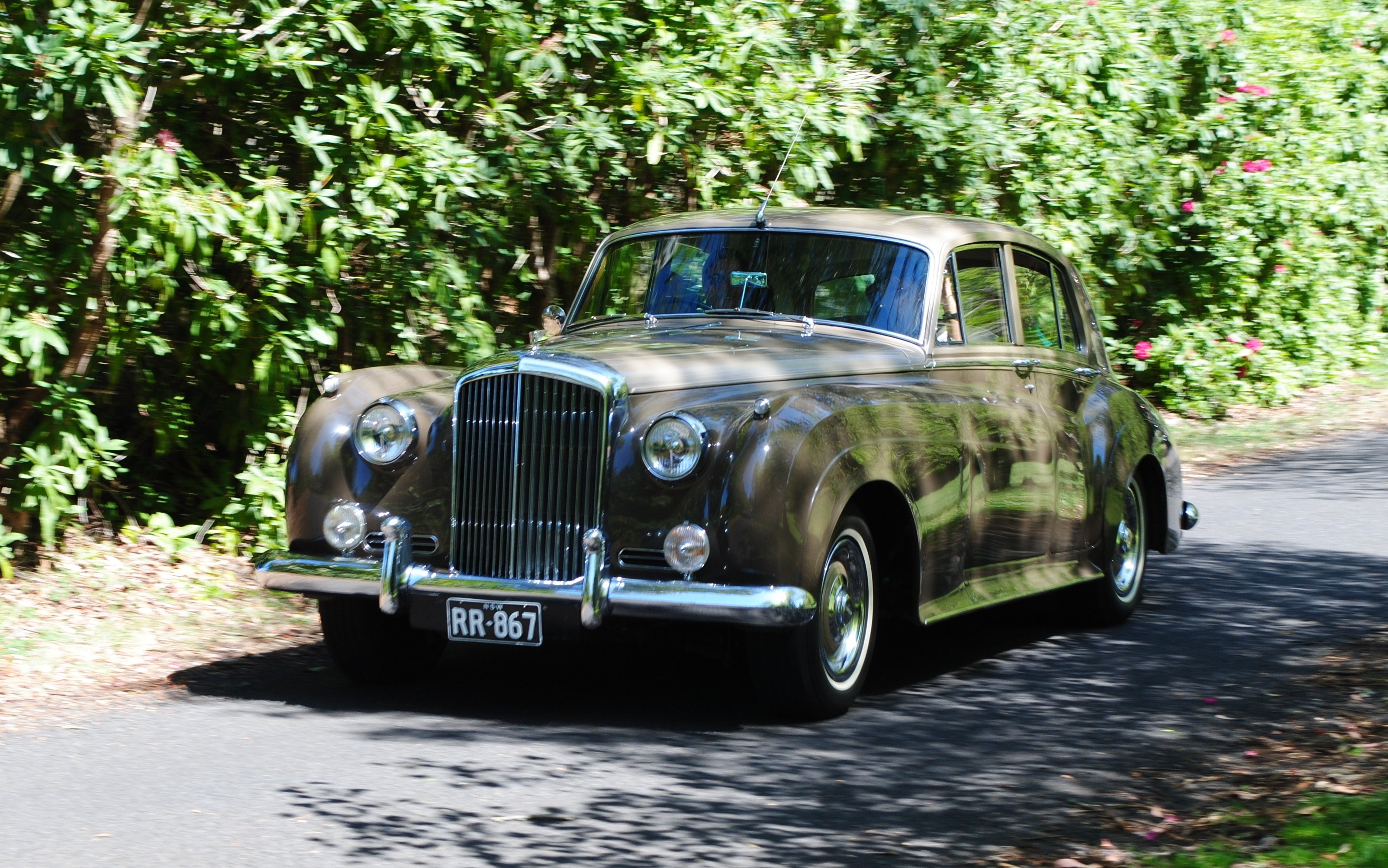Bentley - Mt Wilson