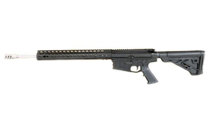 AR10 308