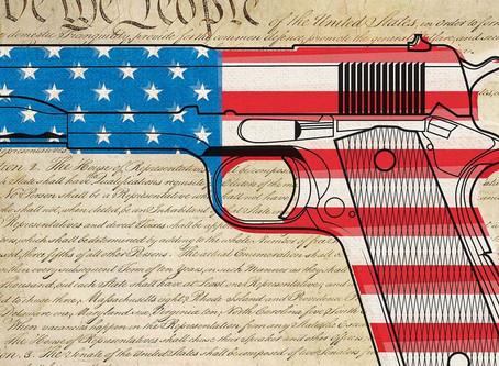Red Flag Gun Laws: Just Say NO
