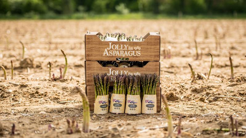 Jolly Asparagus Packaging 1.jpg