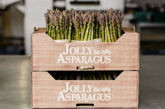 JollyAsparagus-May19-4.jpg