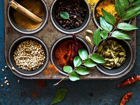 Continuação sobre Ayurveda - doshas e alimentação