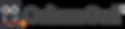 CultureOwl-Logo.png