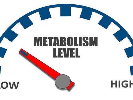 Improve Your Metabolism Through these 5 Easy Steps