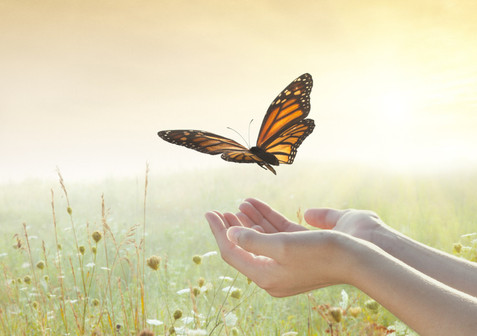 The Art of Letting Go and Living Peacefully