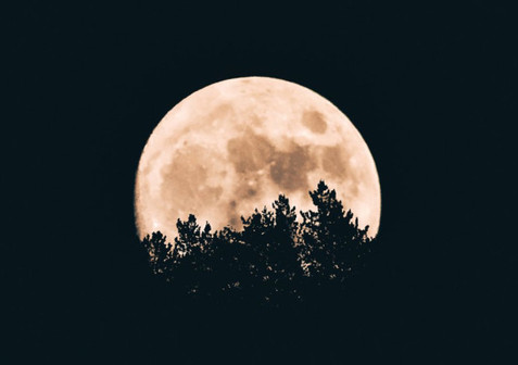 The Effect of the Moon on Human Behaviour Explained