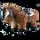 Thumbnail: Crafty Ponies Bridle
