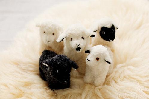 Sheep by the Sea Mascot