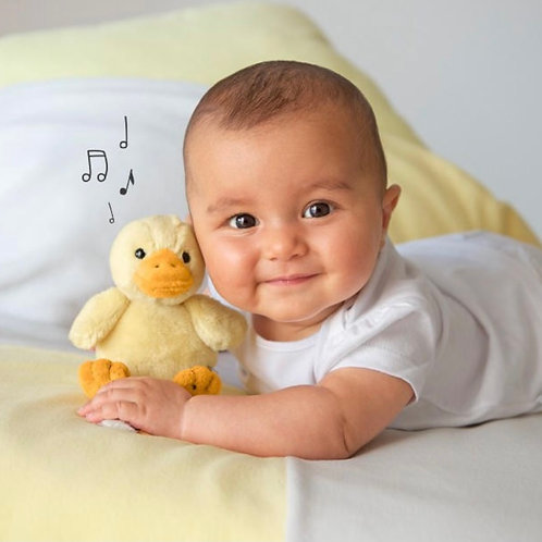 Yellow Chick Musical Toy