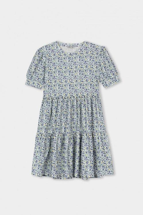 Tiffosi Print Dress