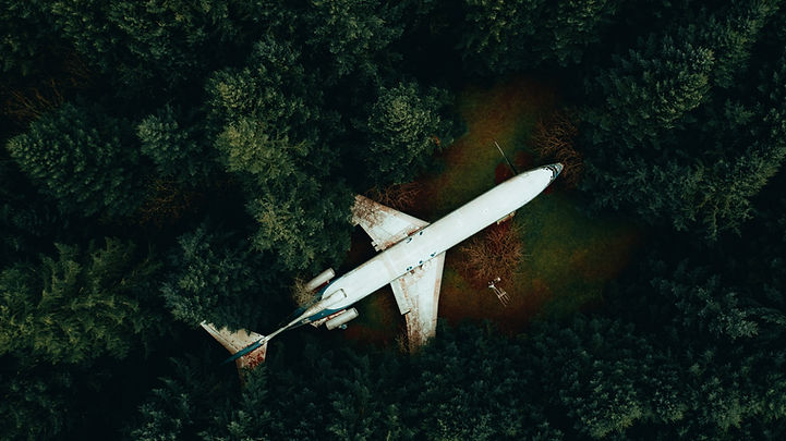 Airplane home. Portland. Nature.