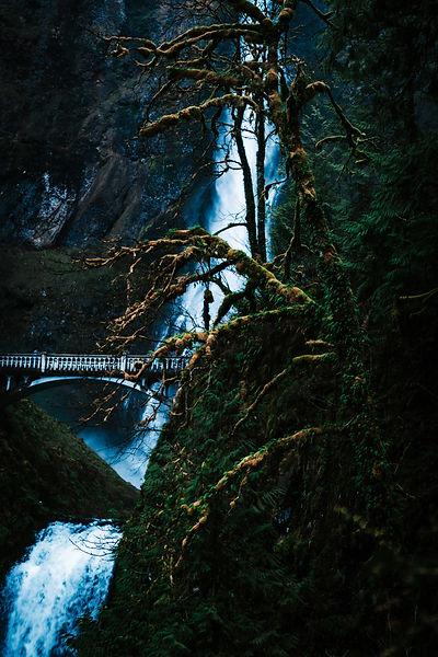 Waterfall. Landscape. Nature.