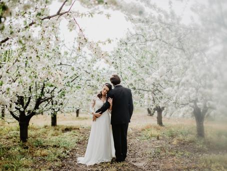 O que fazer durante um elopement?