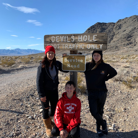 Bradys Blog on Ash Meadows and one of his goals for next year!