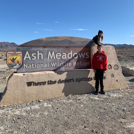 Madison's Goal for New Year along with Ash Meadows Wildlife Refuge