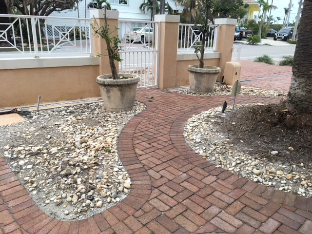 Before Landscaping Front Date Palm