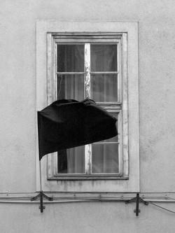 Black Flag_4_w.jpg