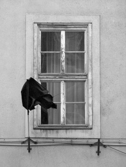 Black Flag_5_w.jpg