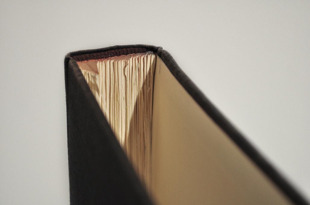 book close up_lr.jpg