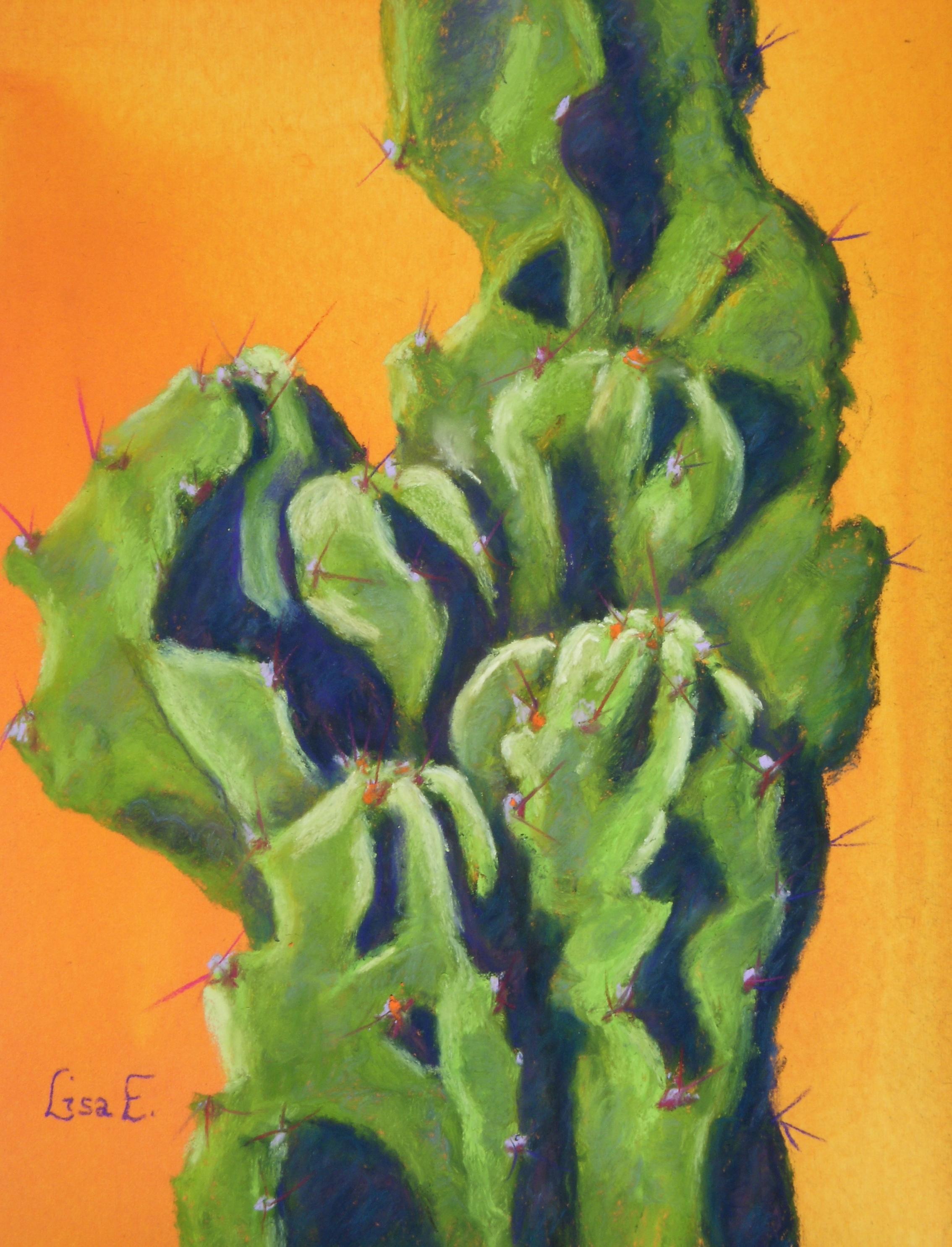Cereus Monstrose