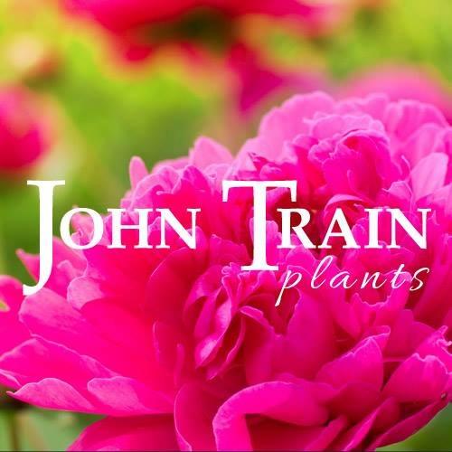 john train plants 2