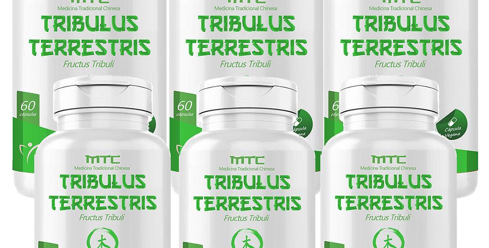 Combo Família - Tribulus Terrestris – Fructus Tribuli – 60 cápsulas