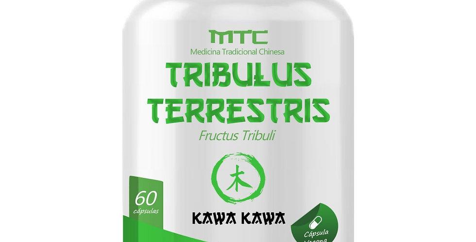 Tribulus Terrestris – Fructus Tribuli – 60 cápsulas