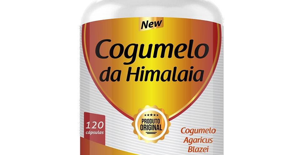 Cogumelo do Himalaia – Cogumelo Agaricus Blazei – 120 cápsulas