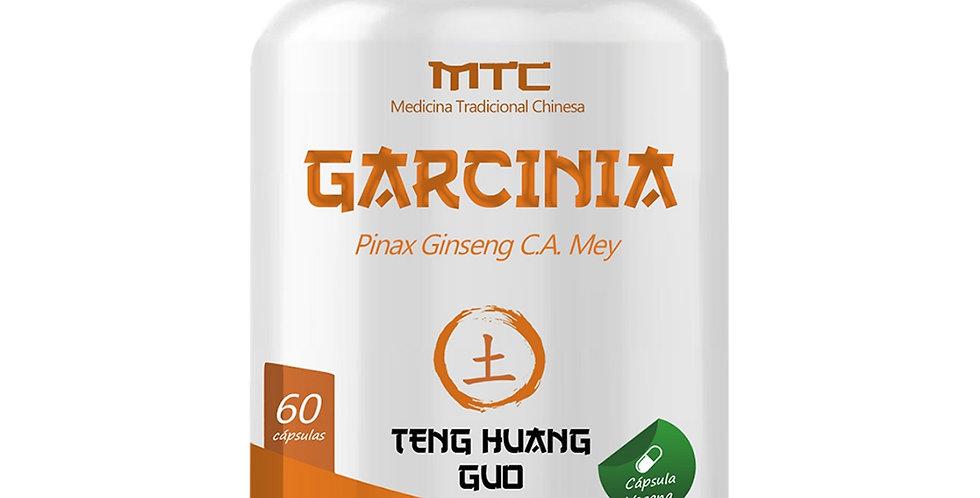 Garcinia – Pinax Ginseng C.A. Mey – 60 cápsulas