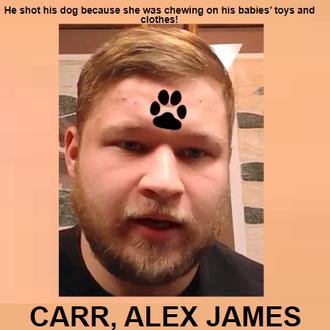 CARR, ALEX JAMES - Michigan, USA