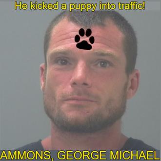 AMMONS, GEORGE MICHAEL - Florida, USA