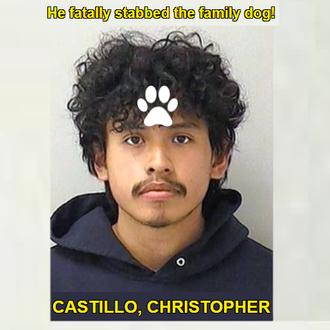 CASTILLO, CHRISTOPHER - Illinois, USA