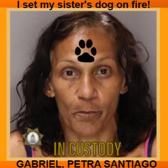 GABRIEL, PETRA SANTIAGO - California, USA