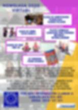 NSW SLASA VIRTUAL 2020.jpg