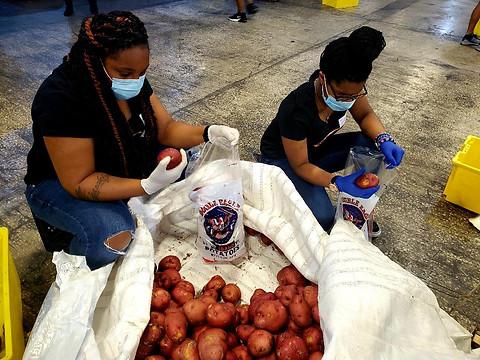Distributing Potatoes1.jpg