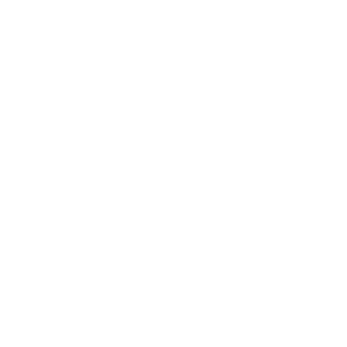 Paid Media White.png