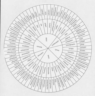 Emoční kompas
