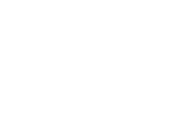 The Nations Network logo_luxury_bold_whi