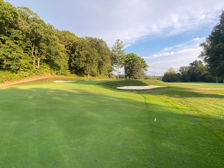Take a peek at Blythefield Country Club's golf course renovations