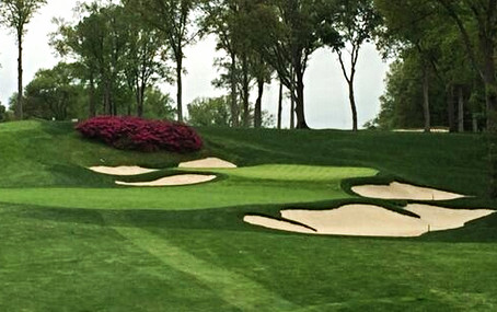 Maxwell Turf Staying Busy with Better Billy Bunker