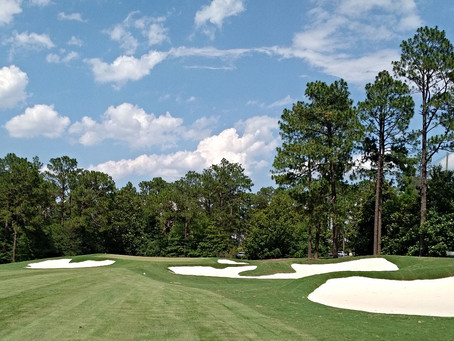 Spence Leads Renovation at CC of NC