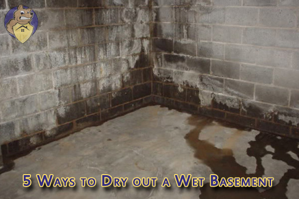 Five Ways to Dry out a Wet Basement