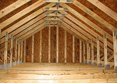 Albany Mold Assessors, Mold Inspections, Mold Inspector