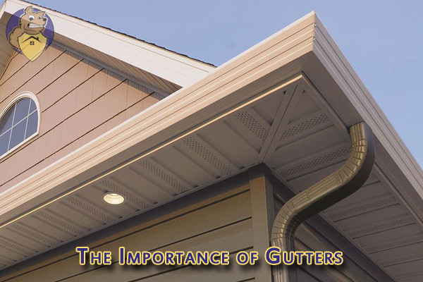 The Importance of Gutters