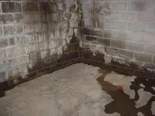8 Tips for Repairing and Avoiding Basement Moisture in homes located in Saratoga NY