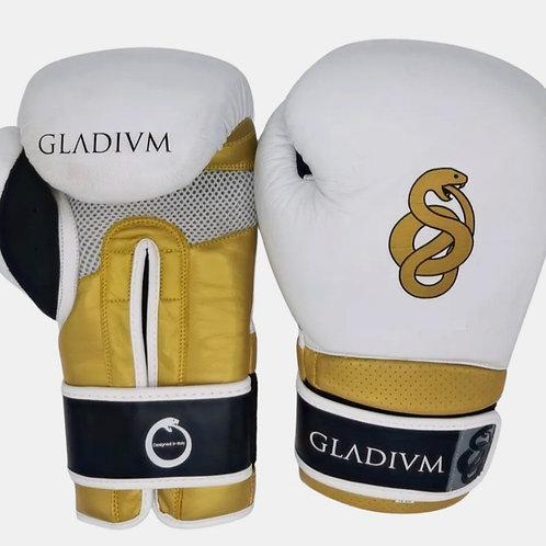Gladivm Victory