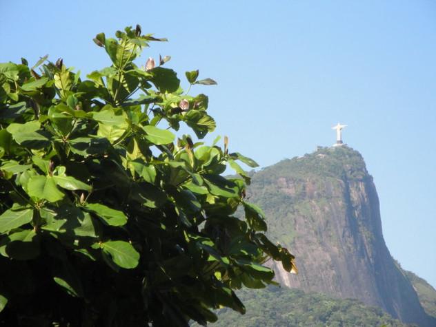 BRAZIL-2009.jpg