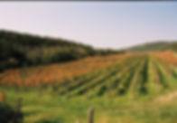 kmetija-s-prenocisci-bordon-dekani-11023