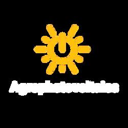 Agrophotovoltaics